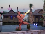 Attractions Magazine Disney Polynesian Resort 18