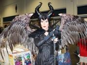 Tampa Bay Comic Con 2014 17