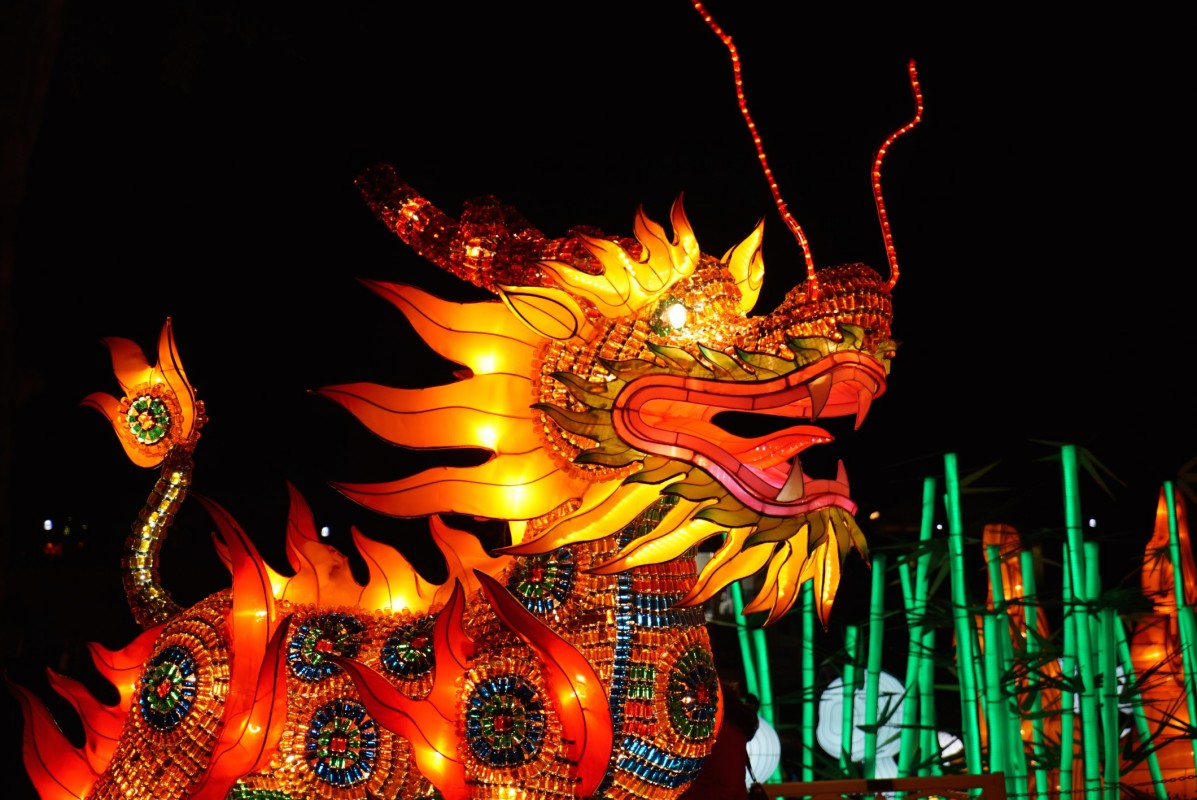 Chinese lantern festival coming to Lowry Park Zoo