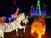 Attractions Magazine Zoominations 2015 6