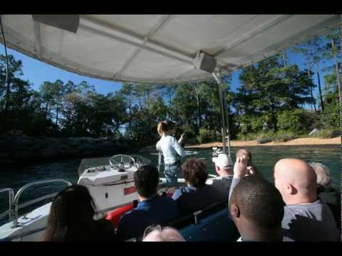 Photo Finds: Farewell tours of Penguin Encounter and Jaws - SeaWorld, Universal Studios 12-19-2011