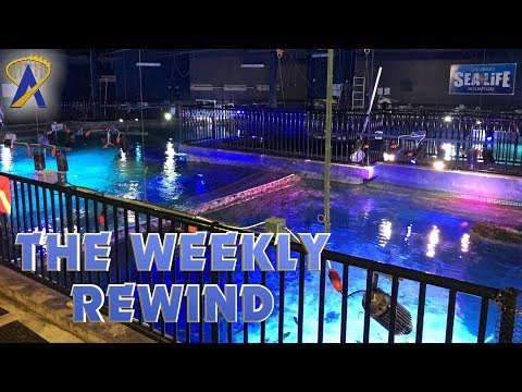 The Weekly Rewind - Sea Life Orlando, Disney Springs updates and more