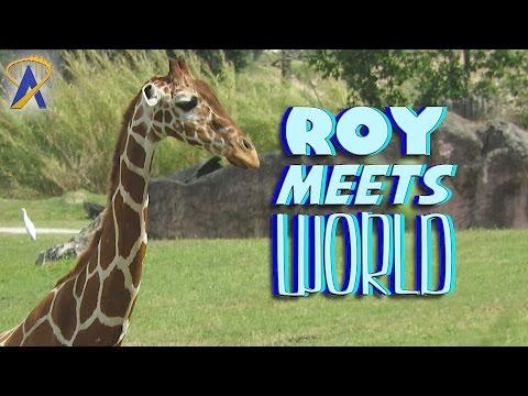 Roy Meets World - 'A Fun Trek Around Busch Gardens Tampa' - April 4, 2017