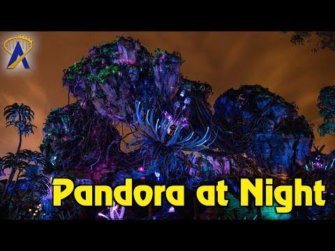 Pandora at Night - The World of Avatar at Disney's Animal Kingdom