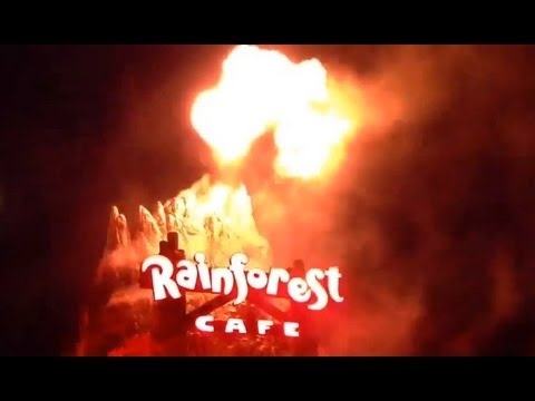 Erupting volcano at Downtown Disney Rainforest Cafe - Walt Disney World