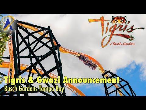 Tigris & Gwazi Announcements at Busch Gardens Tampa Bay