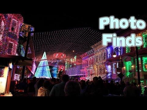 Photo Finds: Osborne Dancing Lights & Universal's Cowfish Restaurant - Nov. 11, 2014