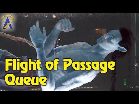 Avatar Flight of Passage queue walkthrough and pre-show inside Pandora at Disney's Animal Kingdom