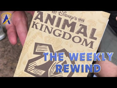 The Weekly Rewind - Animal Kingdom 20, Legoland updates and more