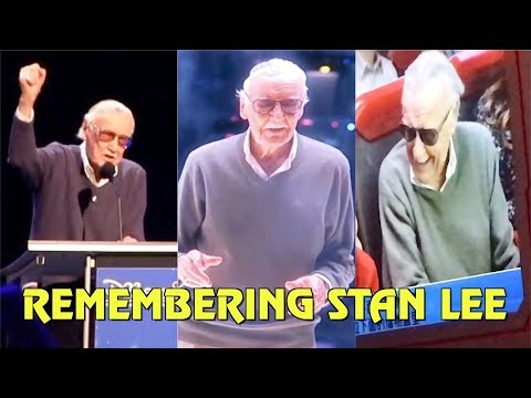 Remembering Stan Lee's Theme Park Cameos and Appearances