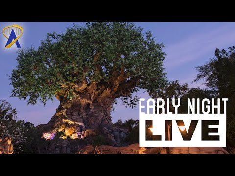 Live from Disney's Animal Kingdom - Early Night Live