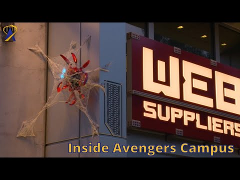Web Suppliers Tour at Avengers Campus, Disney California Adventure
