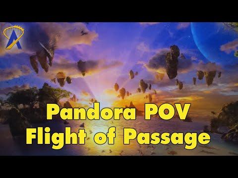 Avatar Flight of Passage POV in Pandora at Disney's Animal Kingdom