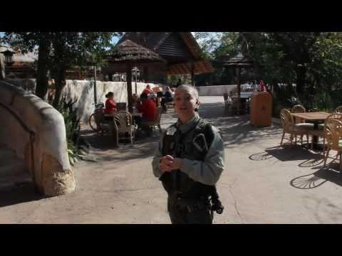 Wild Africa Trek tour at Disney's Animal Kingdom at Walt Disney World