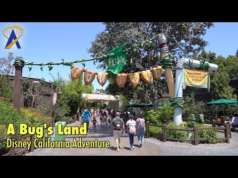 A Look Around 'A Bug's Land' at Disney California Adventure