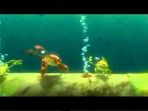 Finding Nemo Crabs Scene