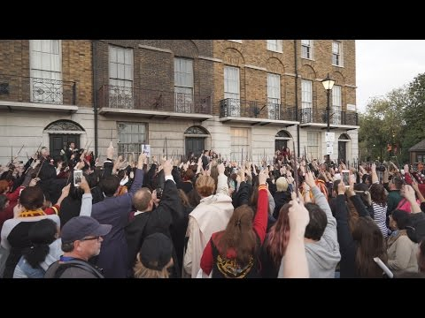 Alan Rickman Tribute at Wizarding World of Harry Potter - Official MuggleNet Gathering