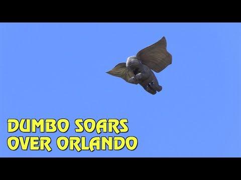 See Dumbo Soar Above Orlando