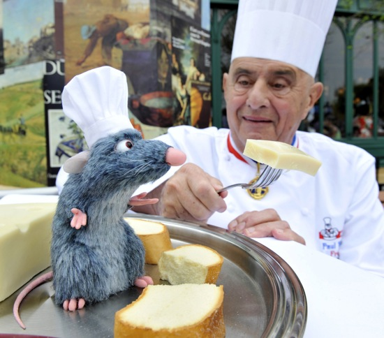 Meet chef remy at epcot disney 39 s smallest 39 living for Chef en frances