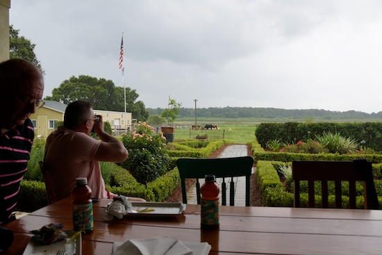 Orlando farm to restaurant 17