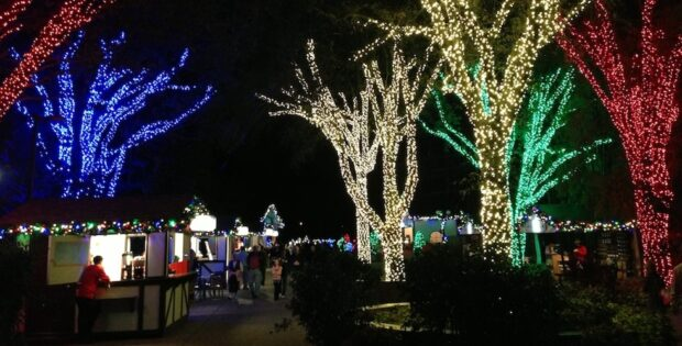 lights at busch gardens tampa christmas town