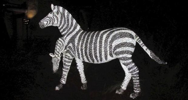 Busch gardens christmas town zebra