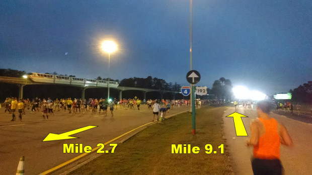 19wdwHalf9mile