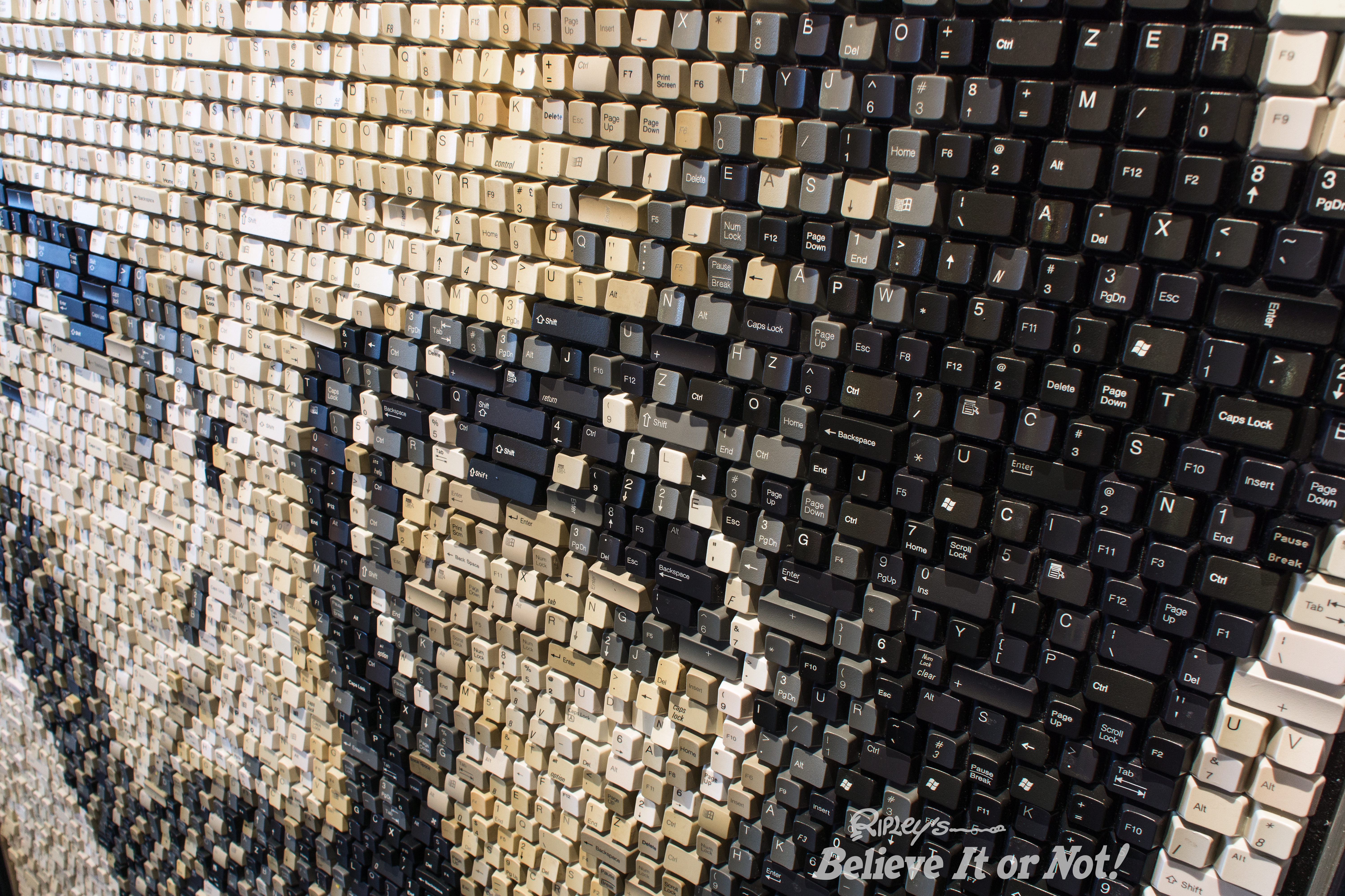 Portrait of steve jobs made of computer keys acquired by for Art made with keys