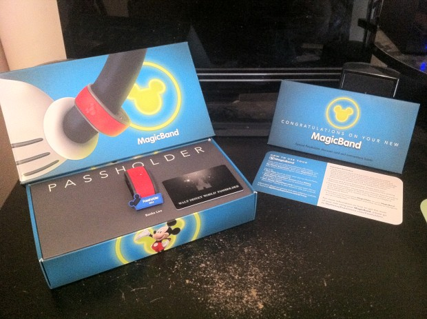 Disney Passholder MagicBand package