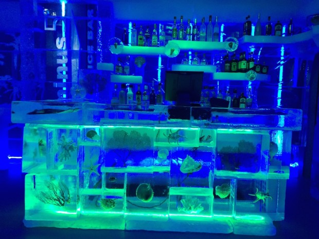 minus5 ice bar orlando 2
