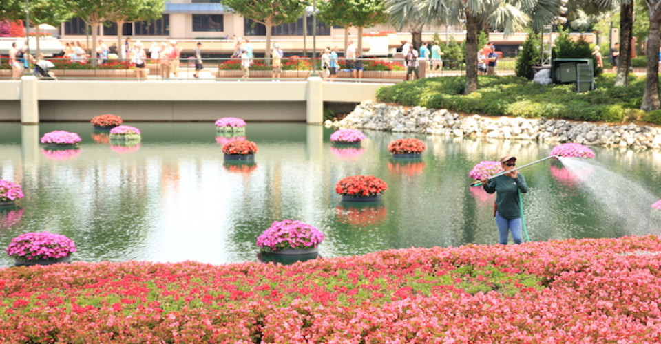 Epcot flower and gardener