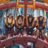 Falcon's Fury at Busch Gardens