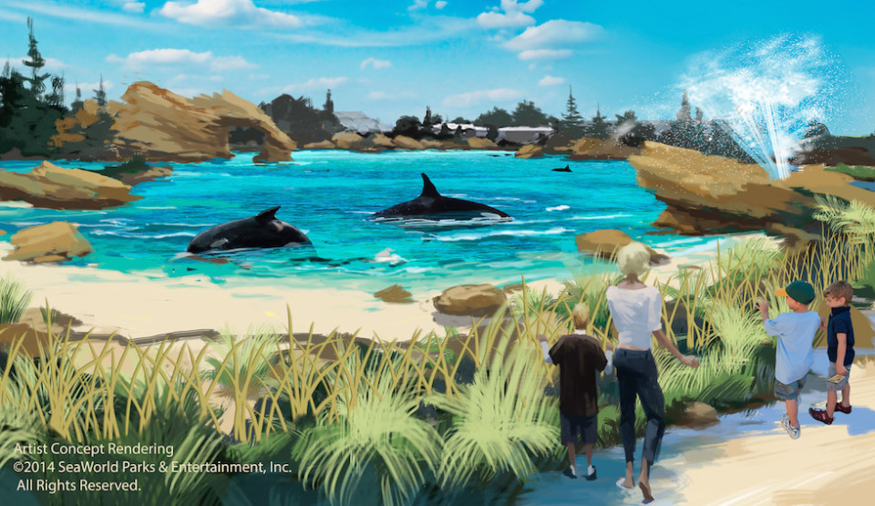 seaworld new killer whale habitat