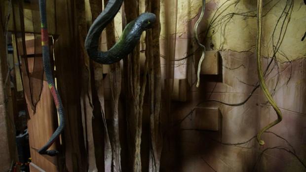 C65-snakes