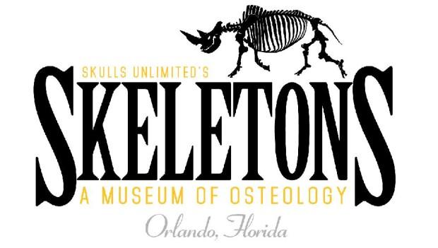 skeletons logo i-drive 360