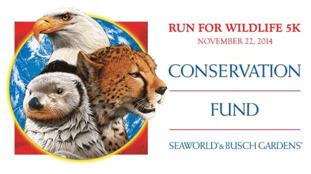 busch gardens run for wildlife 5k