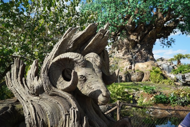 Animal Kingdom new tree sculptures 2