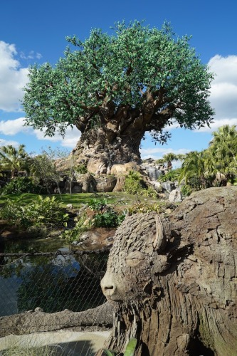 Animal Kingdom new tree sculptures 4