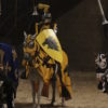 horses and knights at medivel times