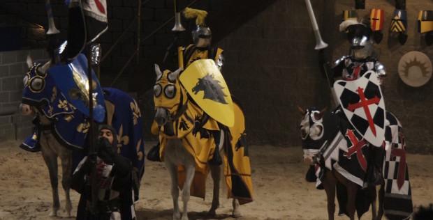 horses and knights at medivel times