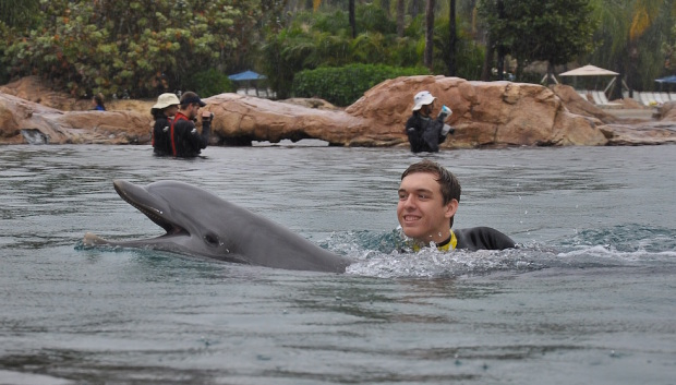 swim with dolphins at discovery cove