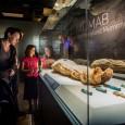 Mummies of the World orlando science center exhibit