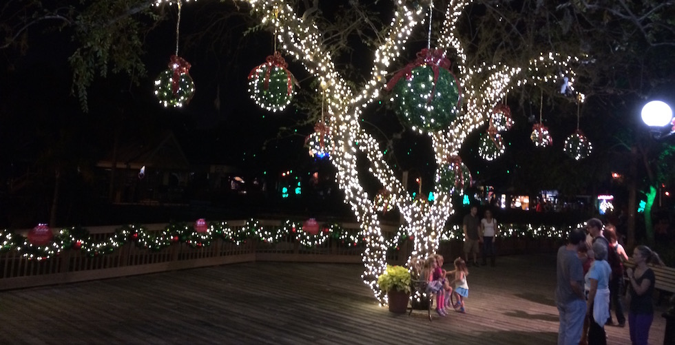 It 39 S A Festive Jungle During Christmas Town At Busch Gardens
