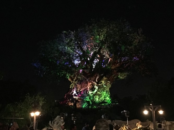 Animal Kingdom nighttime entertainment