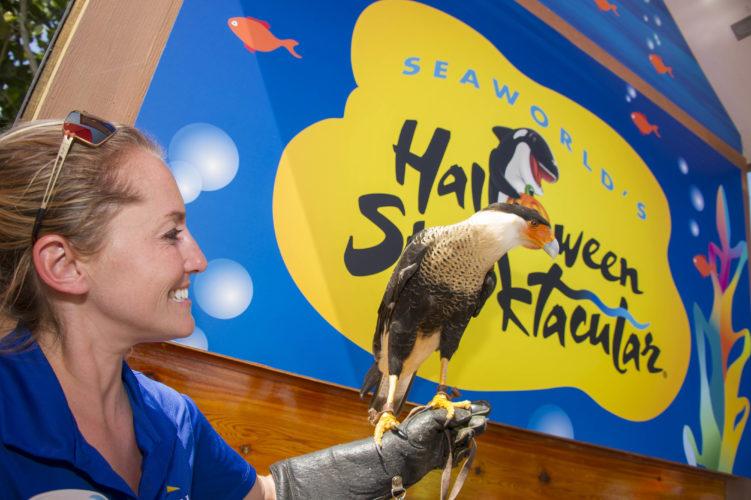SeaWorld Orlando Halloween Spooktacular