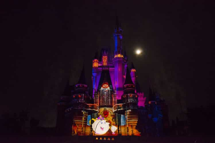 castle projection show