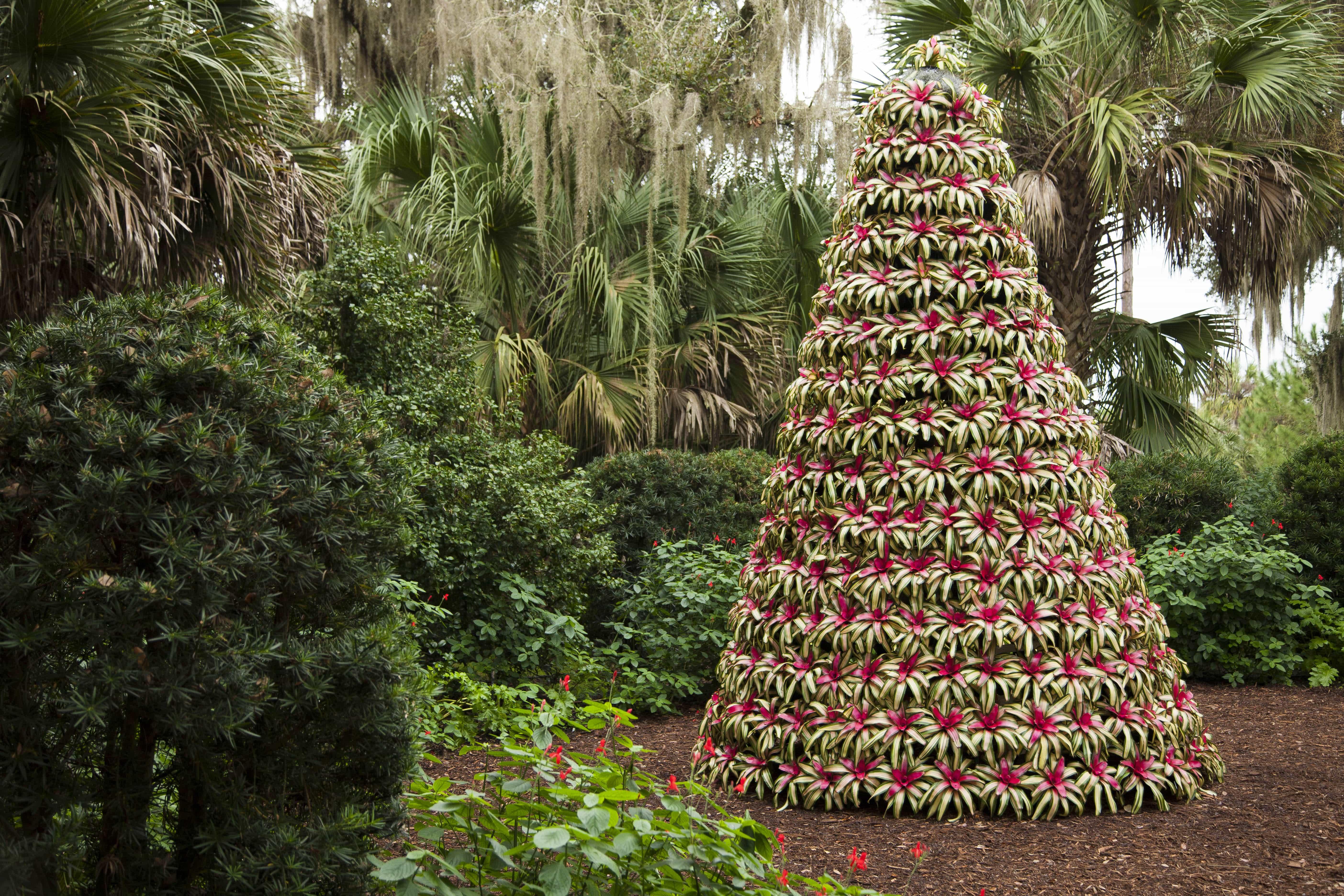 Florida Botanical Garden Florida Botanical Gardens November 25