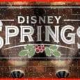 florida e-ticket vlog holidays disney springs
