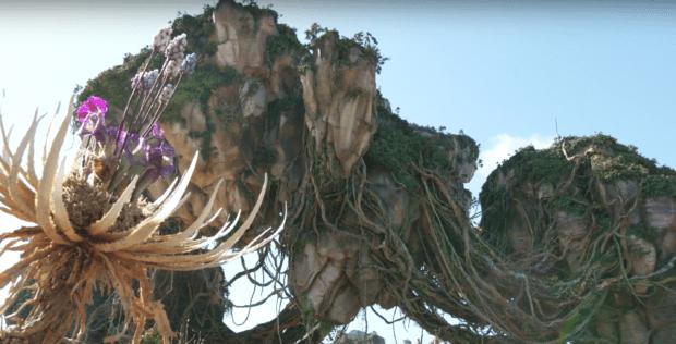 mountain Pandora Avatar