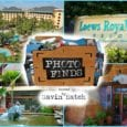 photo finds universal orlando loews royal pacific resort